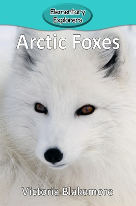 Arctic Foxes- Reader_Page_01