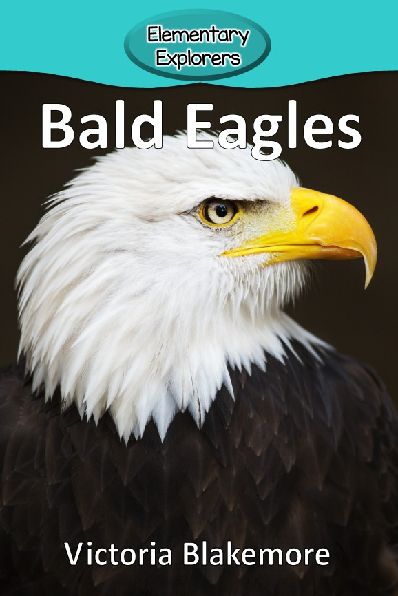 Bald Eagles- Reader_Page_01