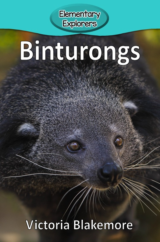 Binturongs- Reader_Page_01