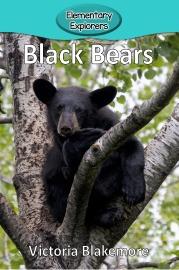 Black Bears- Reader_Page_01
