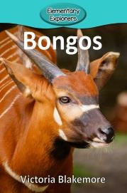 Bongos- Reader_Page_01