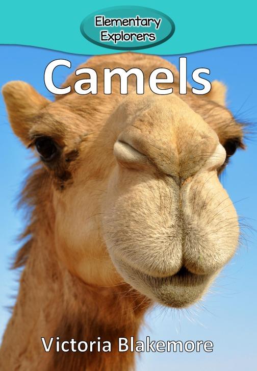 Camels- Reader_Page_01