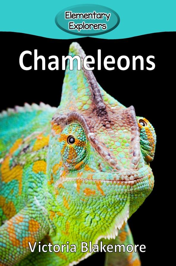 Chameleons- Reader_Page_01