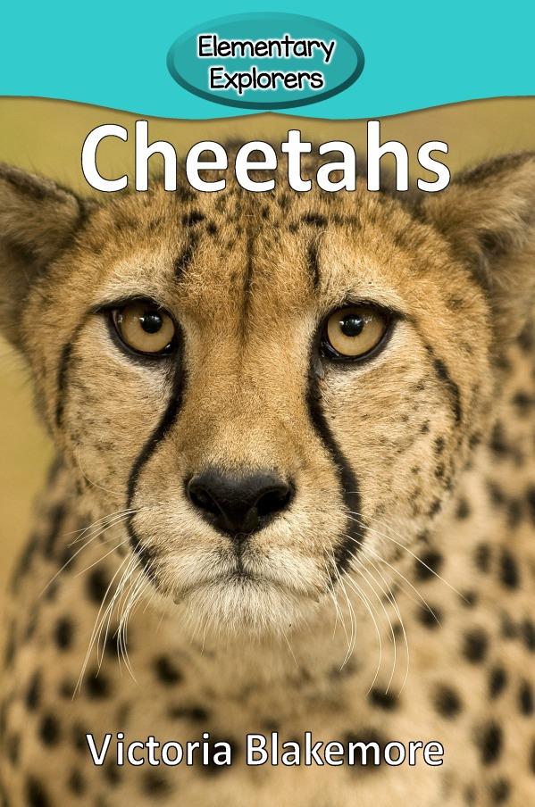 Cheetahs- Reader_Page_01