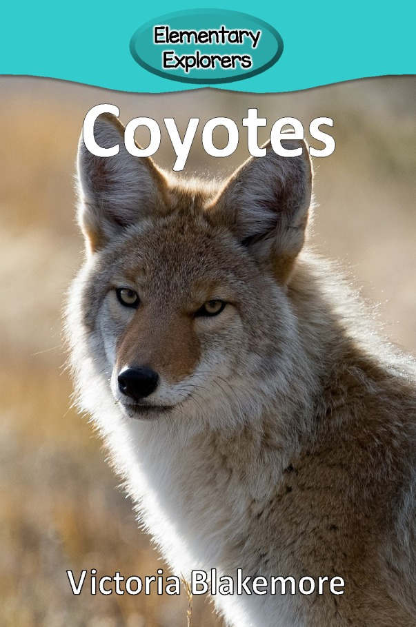 Coyotes- Reader_Page_01