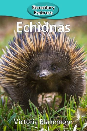 Echidnas- Reader_Page_01