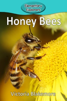 Honey Bees- Reader_Page_01