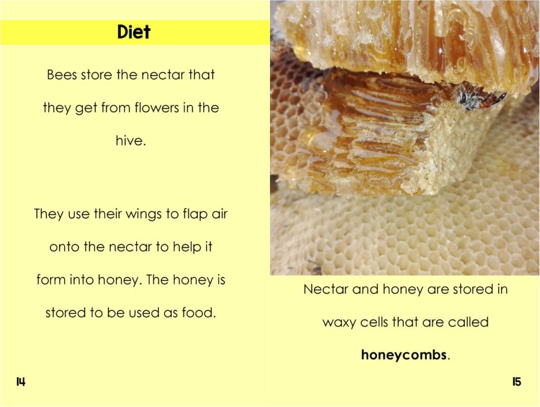 HoneyBeesinterior