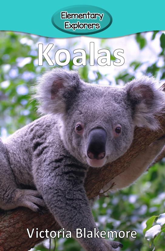 Koalas- Reader_Page_01