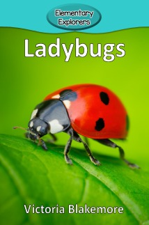 Ladybugs- Reader_Page_01