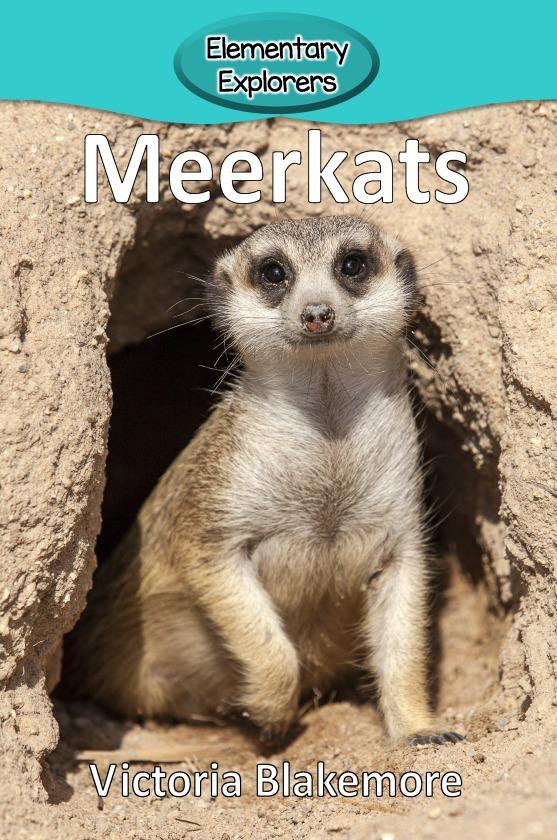 Meerkats- Reader_Page_01