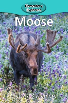 Moose- Reader_Page_01