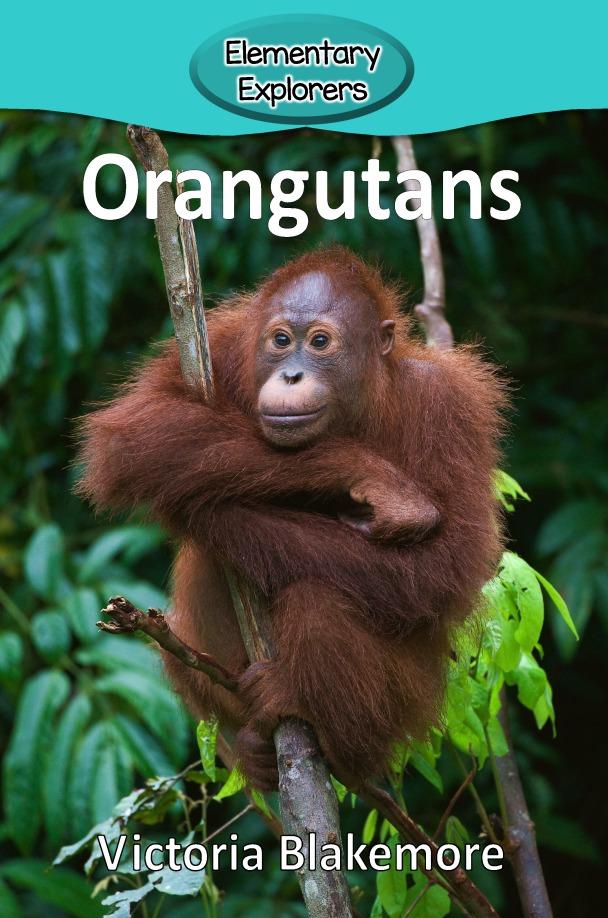 Orangutans- Reader_Page_01