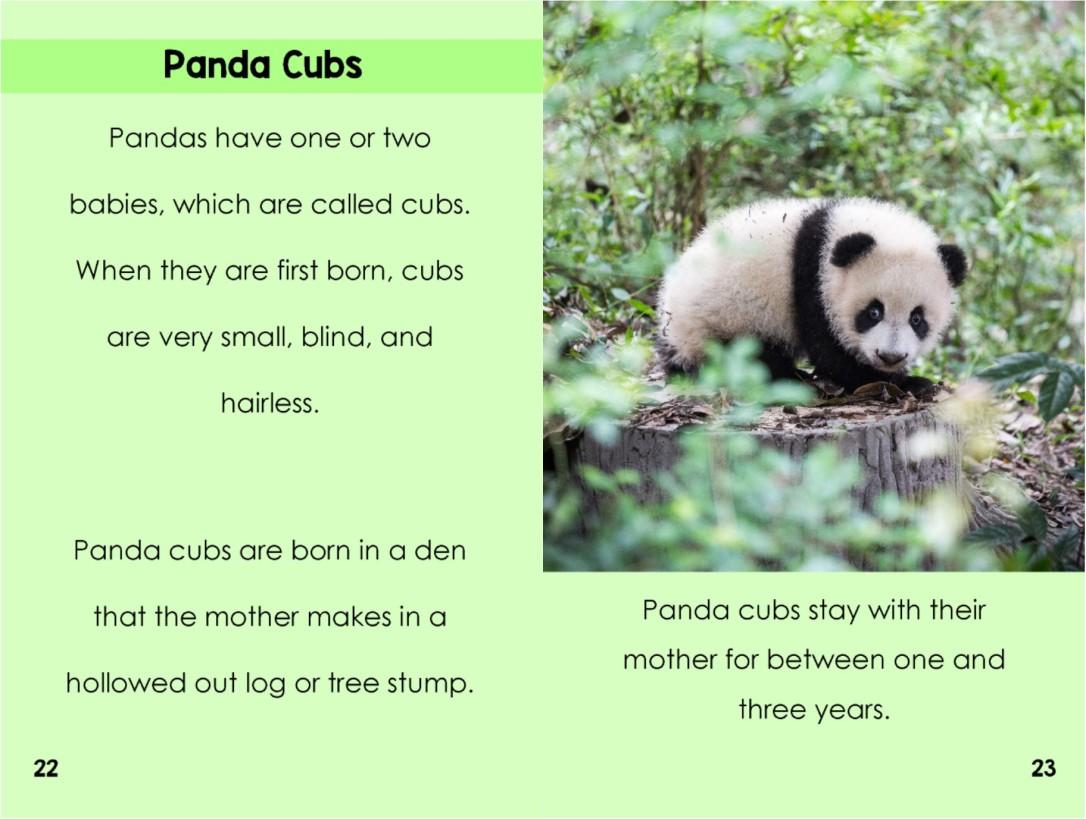 Pandasinterior