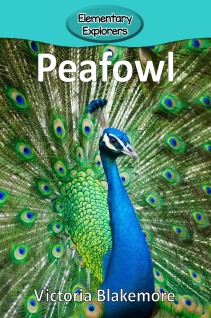 Peafowl- Reader_Page_01