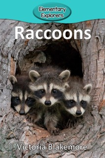 Raccoons- Reader_Page_01