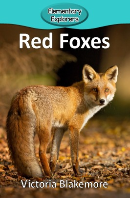 Red Foxes- Reader_Page_01