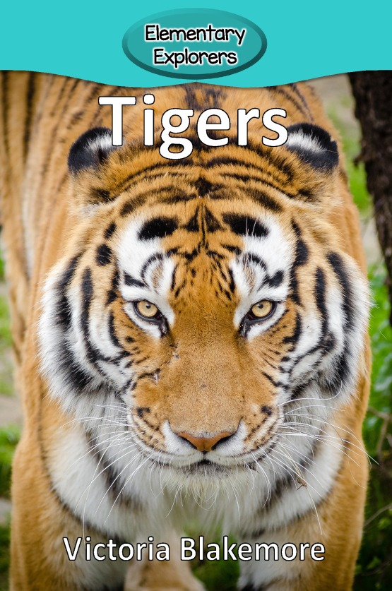 Tigers- Reader_Page_01