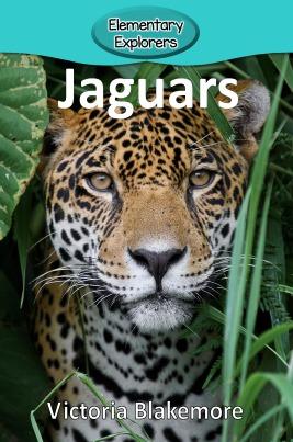 Jaguars- Reader_Page_1