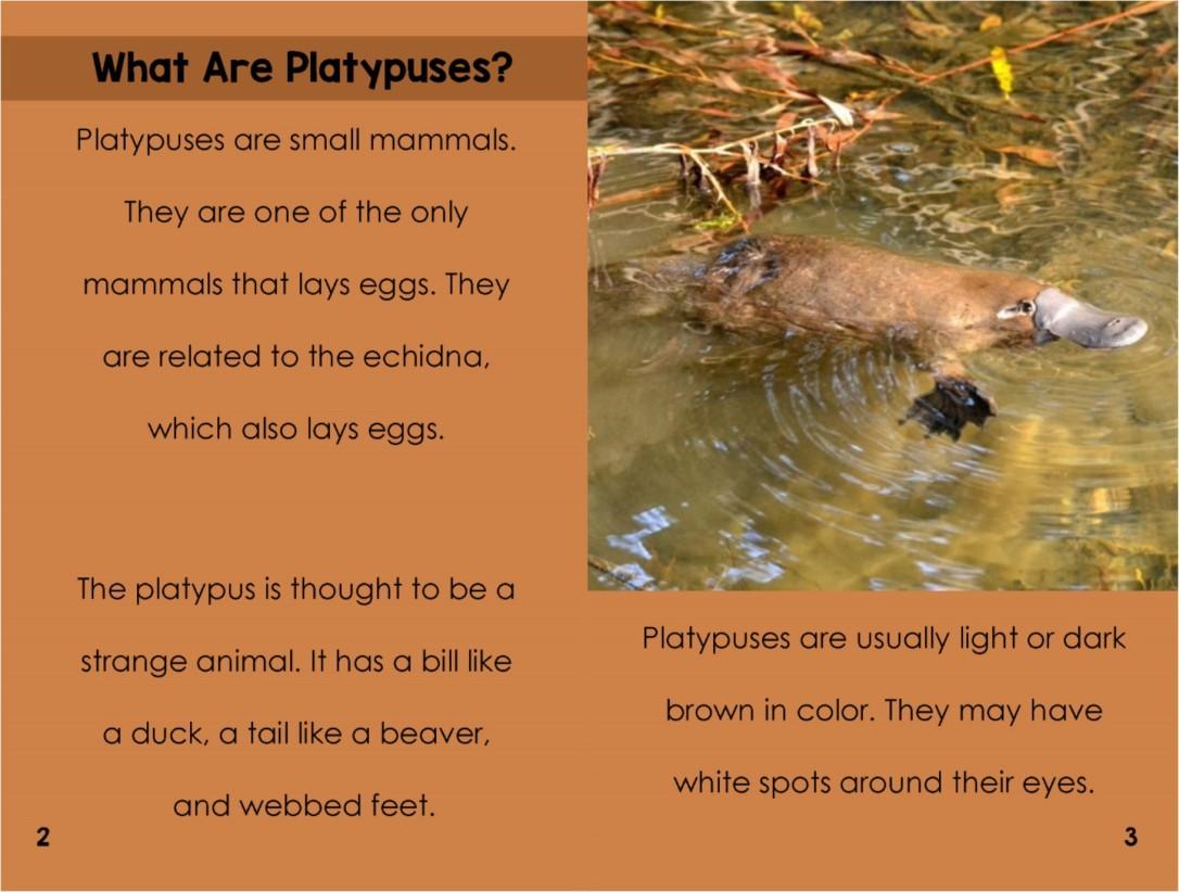 Platypusesinterior