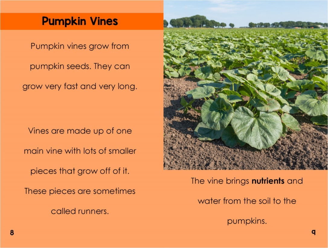 Pumpkinsinterior