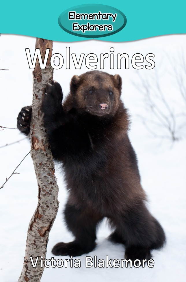Wolverines- Reader_Page_1