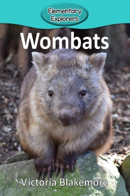 Wombats- Reader_Page_1