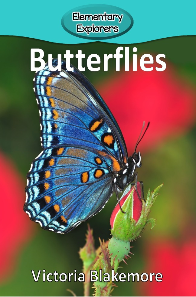 Butterflies- Reader_Page_1