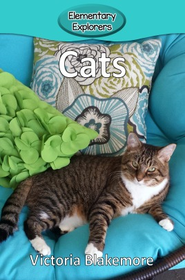 Cats- Reader_Page_1