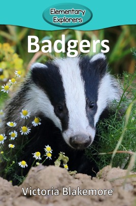 Badgers- Reader_Page_1