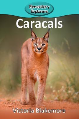 Caracals- Reader_Page_1