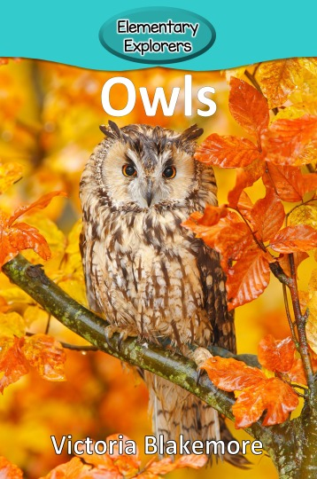 Owls- Reader_Page_1