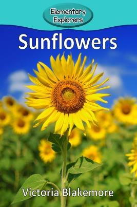 Sunflowers- Reader_Page_1