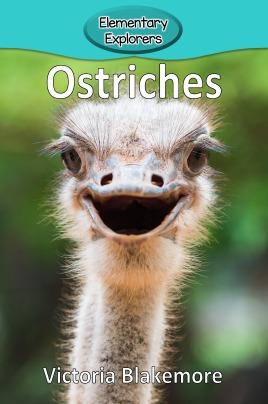 Ostriches- Reader_Page_1
