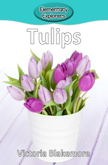 Tulips- Reader_Page_1