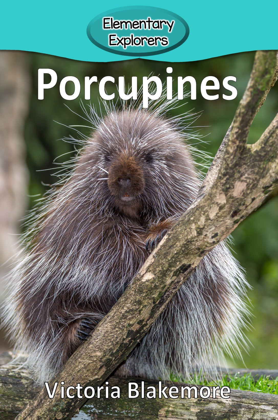 porcupines- reader_page_01
