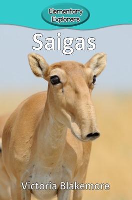 Saigas- Reader_Page_1