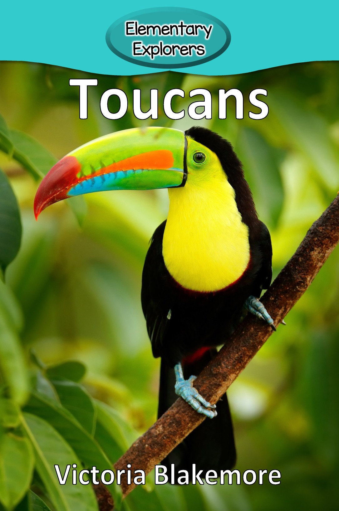 Toucans- Reader_Page_1